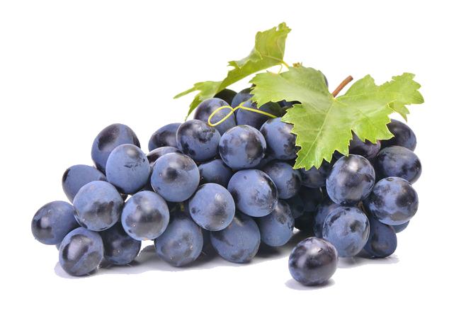 druifjes